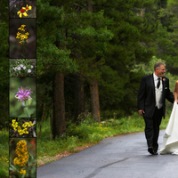 Beauty, Inspiration, Flowers & Decor, Jewelry, Wedding Dresses, Fashion, white, black, dress, Makeup, Flowers, Hair, Board, Park, Colorado, Estes, Peter holcombe photography, Malo, Sant, Flower Wedding Dresses