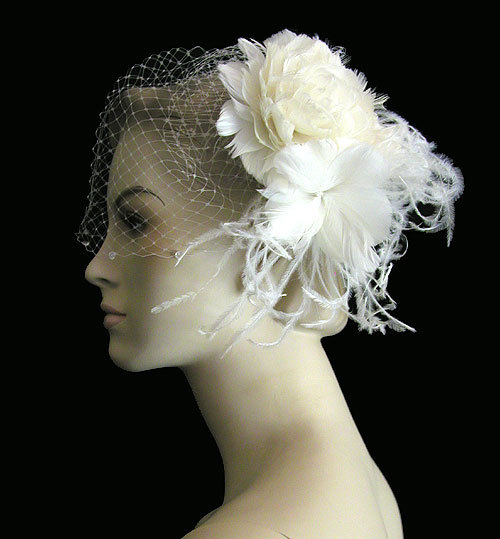 Beauty, Wedding Dresses, Fashion, dress, Hair, Birdcage veil, Hairpiece, Hair comb, Distinctive veils accessories