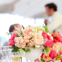 white, pink, Wedding, Sarah robby