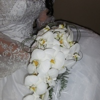 Flowers & Decor, white, Bride Bouquets, Flowers, Bouquet, Orchid, Heaven scent florals