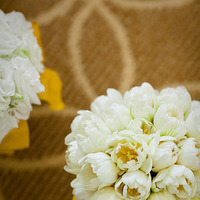 Flowers & Decor, white, yellow, Flowers, Tulips, Jamie greg