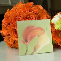 Ceremony, Reception, Flowers & Decor, Bridesmaids, Bridesmaids Dresses, Wedding Dresses, Stationery, Cakes, Fashion, orange, pink, cake, dress, Ceremony Flowers, Bridesmaid Bouquets, Invitations, Flowers, Flower Wedding Dresses