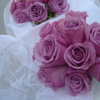 Ceremony, Reception, Flowers & Decor, Bridesmaids, Bridesmaids Dresses, Fashion, purple, green, Ceremony Flowers, Bridesmaid Bouquets, Flowers, Bridesmaid bouquet, Empora floral artistry, lavendar roses, Flower Wedding Dresses