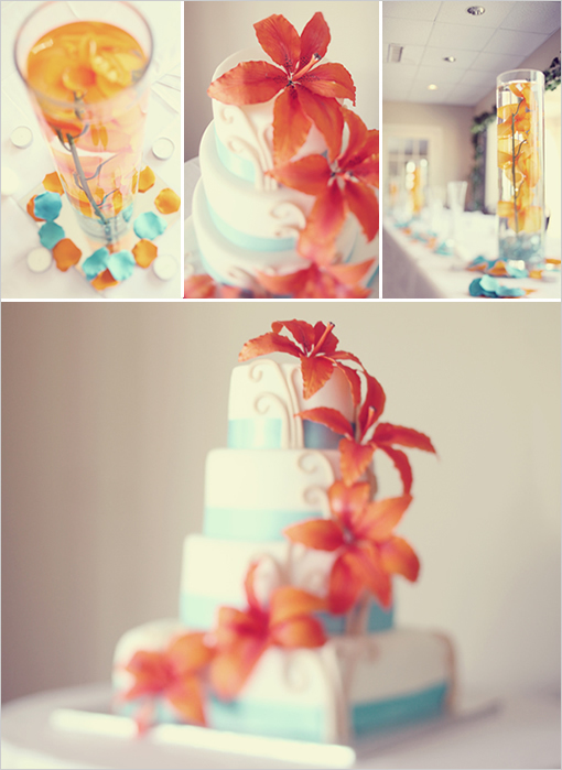 Cakes, orange, blue, cake, Tiffany, Coral