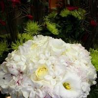 Flowers & Decor, white, pink, Bride Bouquets, Bride, Flowers, Roses, Bouquet, Peonies, Peony, Tampa, Apple blossoms floral designs gifts