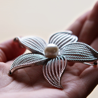 Beauty, Jewelry, Brooches, Hair, Brooch