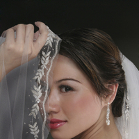 Wedding Dresses, Veils, Fashion, silver, dress, Accessories, Bridal, Gowns, One in a million bridal boutique
