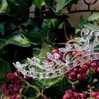 Beauty, Jewelry, silver, Tiaras, Hair, Tiara, Headpiece, Crown, The thank you company
