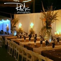 Beauty, Reception, Flowers & Decor, Feathers, Centerpieces, Flowers, Centerpiece, Hill, Country, Chic, Feather, Safari, Fit to be tied events