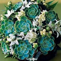 Flowers & Decor, white, green, Bride Bouquets, Flowers, Bouquet