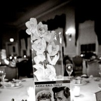 Reception, Flowers & Decor, Table, Number, Ideas, Tents, Lorraine daley wedding photography
