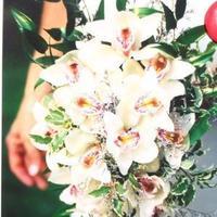 Flowers & Decor, white, pink, green, Bride Bouquets, Bride, Flowers, Bouquet, Orchids, Embellish floral studio