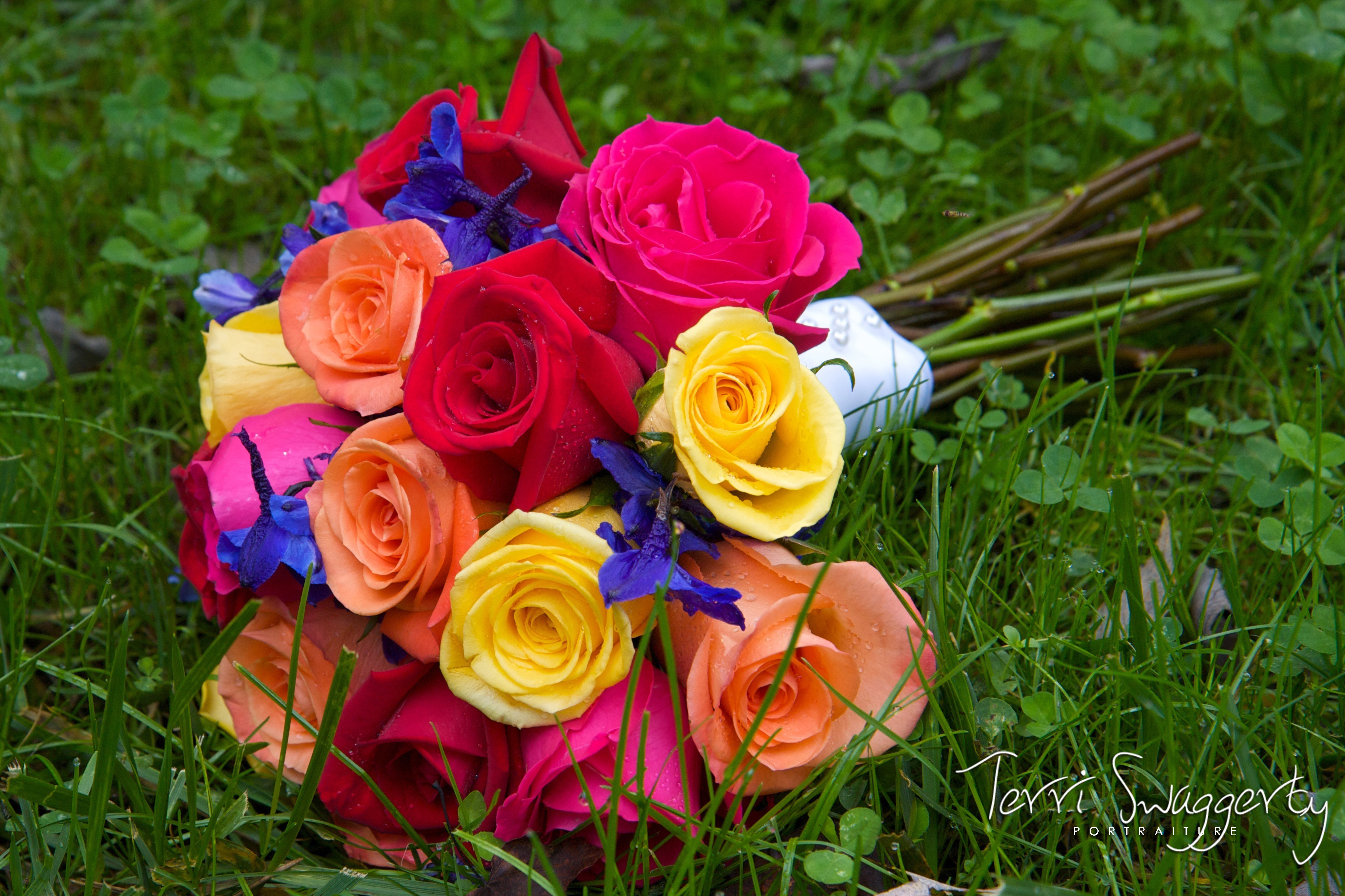 Flowers & Decor, yellow, orange, pink, red, purple, blue, Flowers, Roses, Lisa foster floral design