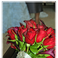 Flowers & Decor, red, Bride Bouquets, Flowers, Bouquet, llc, Aperture photography