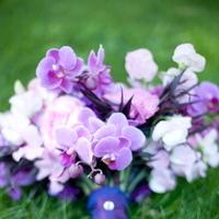 Flowers & Decor, pink, purple, Bride Bouquets, Bridesmaid Bouquets, Flowers, Bouquet, Bridesmaid, Bridal, Orchids, Bouquets, Botanica floral designs, Blouquet