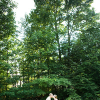 Wedding Dresses, Fashion, green, dress, Portrait, Kiss, Fun, Unique, Canoe, Mary dougherty photography