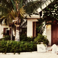 Destinations, Caribbean, Beach, Wedding, Tropical, And, Destination, Villa, Palms, Fleur de lys villa, Caicos, Turks