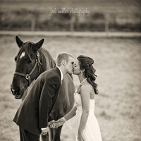 Wedding Dresses, Photography, Romantic Wedding Dresses, Fashion, white, brown, dress, Wedding, Romantic, Photographer, Horse, Farm, Jodi, Miller, Va, Jodi miller photography