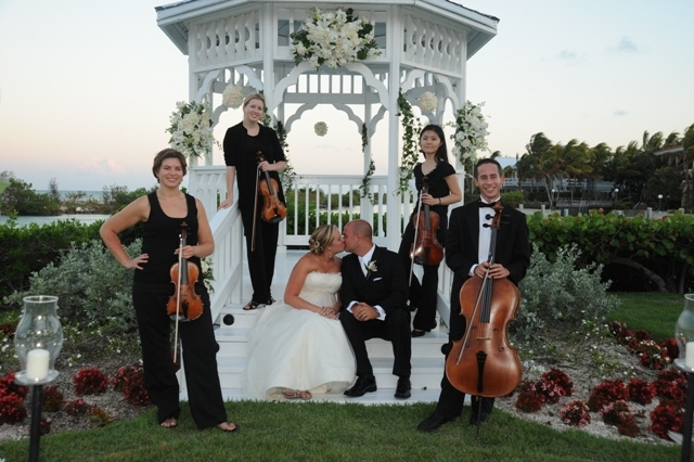 Entertainment, blue, Harp, Wedding, Music, Dj, Quartet, Bands, Dancers, Mariachi, Jazz, Trio, String, Salsa, Aamusicians