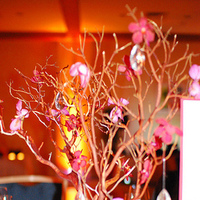 Reception, Flowers & Decor, pink, red, Centerpieces, Centerpiece, Orchid, Tree, Crystal, Manzanita