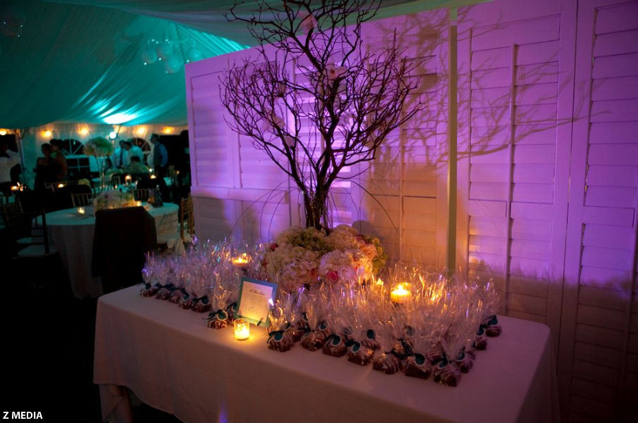 Reception, Flowers & Decor, Favors & Gifts, white, purple, blue, favor, Favors, Lighting, llc, Station, Amy nixon events