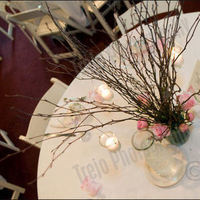 Reception, Flowers & Decor, white, pink, Centerpieces, Candles, Flowers, Roses, Centerpiece, Branches, Branch, llc, Peonies, Peony, Amy nixon events