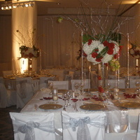 Reception, Flowers & Decor, white, red, silver, Lighting, Chair, Draping, Covers, Backdrop, Overlay, Pure elegance