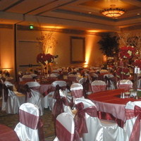 Reception, Flowers & Decor, white, red, burgundy, Lighting, Chair, Covers, Pure elegance