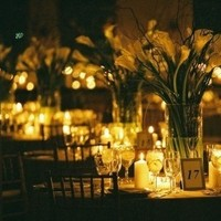 Reception, Flowers & Decor, Centerpieces, Flowers, Centerpiece, Callas