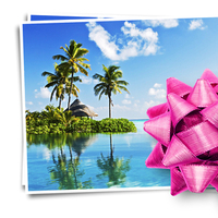 Registry, pink, blue, Honeymoon registry, Buy our honeymoon