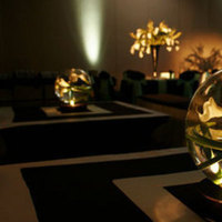 Reception, Flowers & Decor, Centerpieces, Flowers, Centerpiece, Callas