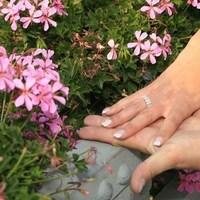 Flowers & Decor, pink, Flowers