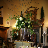 Reception, Flowers & Decor, Centerpieces, Flowers, Centerpiece, Jennifer farris - photographer