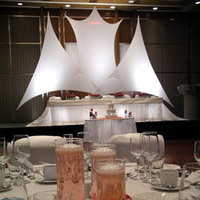 Ceremony, Reception, Flowers & Decor, white, yellow, orange, pink, red, purple, blue, green, brown, black, silver, gold, Tables & Seating, Wedding, Bridal, Table, And, Pipe, Chairs, Tent, Events, Special, Tables, Drape, Nextarts