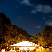 Reception, Flowers & Decor, Lighting, Tent