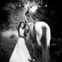 Inspiration, Wedding Dresses, Fashion, white, black, dress, Fall, Bride, Outdoor, Board, Horse, Riding, Horseback, Pheifer photography llc, Fall Wedding Dresses