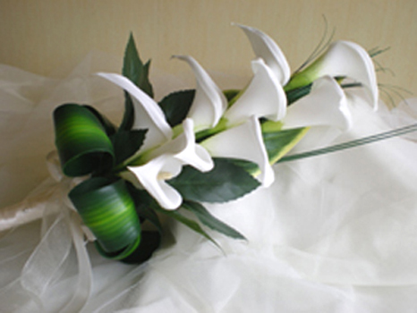 Flowers & Decor, white, ivory, Bride Bouquets, Flowers, Bouquet, Of, Calla, Lilies, Bridal, The, Over, Arm, Rainbow wedding flowers