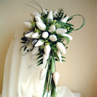 Flowers & Decor, white, ivory, Bride Bouquets, Flowers, Bouquet, Bridal, Tulips, Rainbow wedding flowers, Semi-crescent