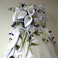 Beauty, Flowers & Decor, white, black, Feathers, Bride Bouquets, Flowers, Bouquet, Calla, With, Lily, Shower, Ostrich, Rainbow wedding flowers
