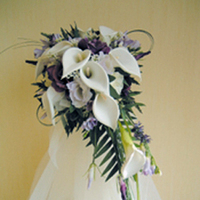 Flowers & Decor, white, purple, Flowers, Calla, Lilies, Scottish, Thistle