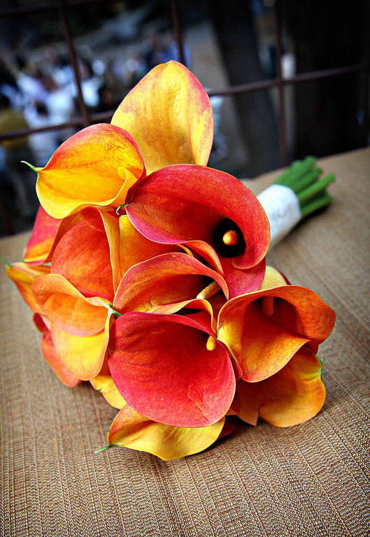 Inspiration, Flowers & Decor, orange, red, green, Flowers, Calla, Lilies, Board, Julie wilson photography