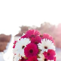 Flowers & Decor, white, pink, Flowers, Flower allie
