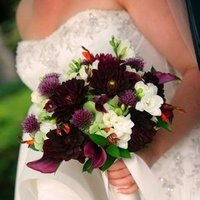 Flowers & Decor, purple, green, Bride Bouquets, Flowers, Bouquet, Bridal, One of a kind botanical design