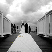 Ceremony, Flowers & Decor, white, yellow, black, Bride, Groom, Of, And, Back, Aisle, Shot, Shannah phillips photography graphic design