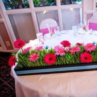 Flowers & Decor, pink, Centerpieces, Flowers, Centerpiece, Flower allie