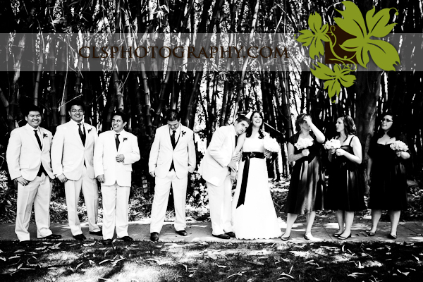 Wedding party, Christine lee smith photography