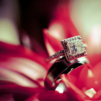 Jewelry, red, Engagement Rings, Ring, Engagement, Delighted photography