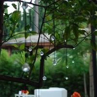 Reception, Flowers & Decor, white, yellow, orange, red, green, Garden, Wedding, Lounge, Love in la events