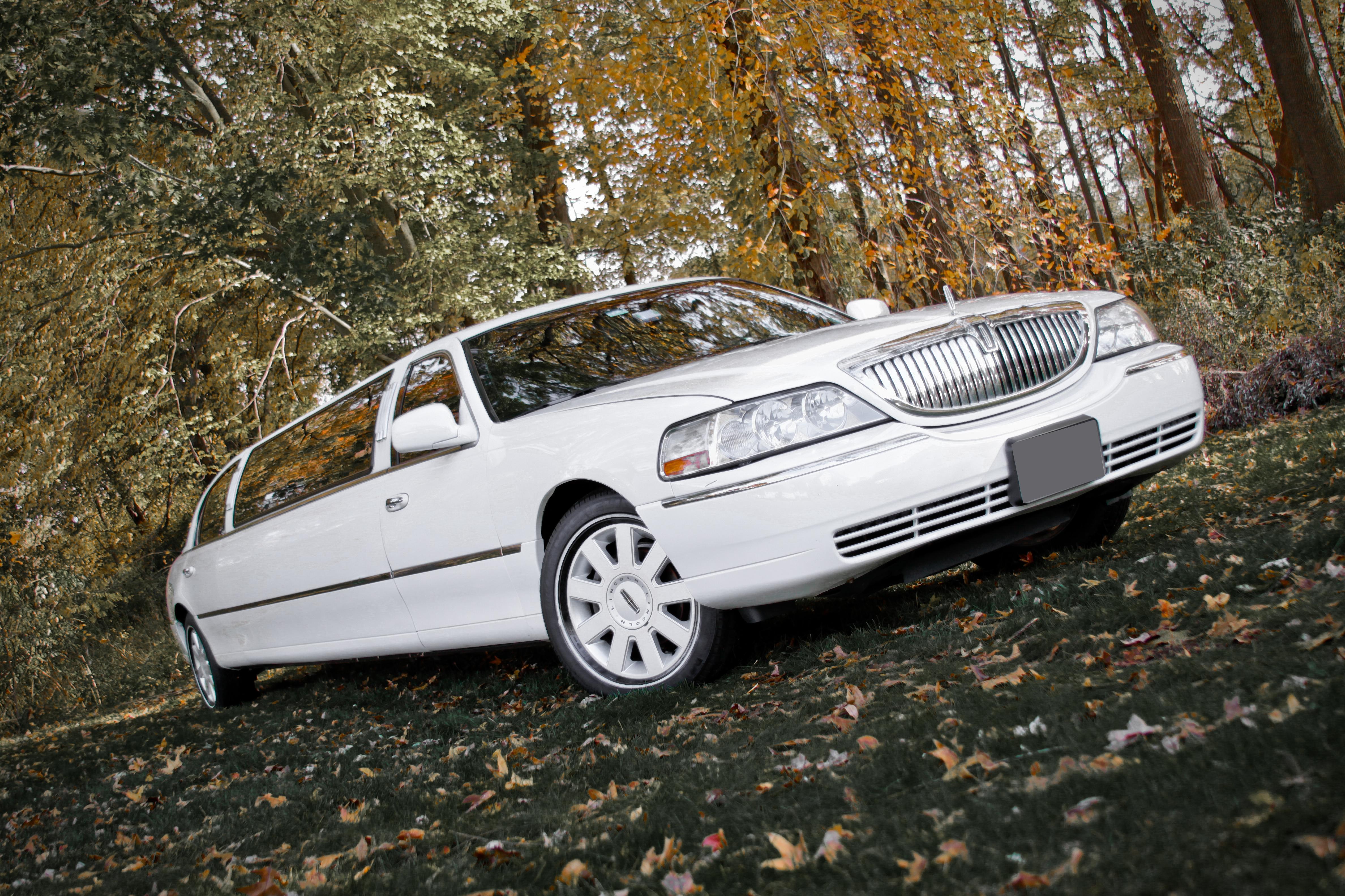 Limousine, inc, Fancylimoscom