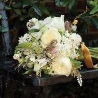 Flowers & Decor, Bride Bouquets, Flowers, Bouquet, Bella bridal consultants